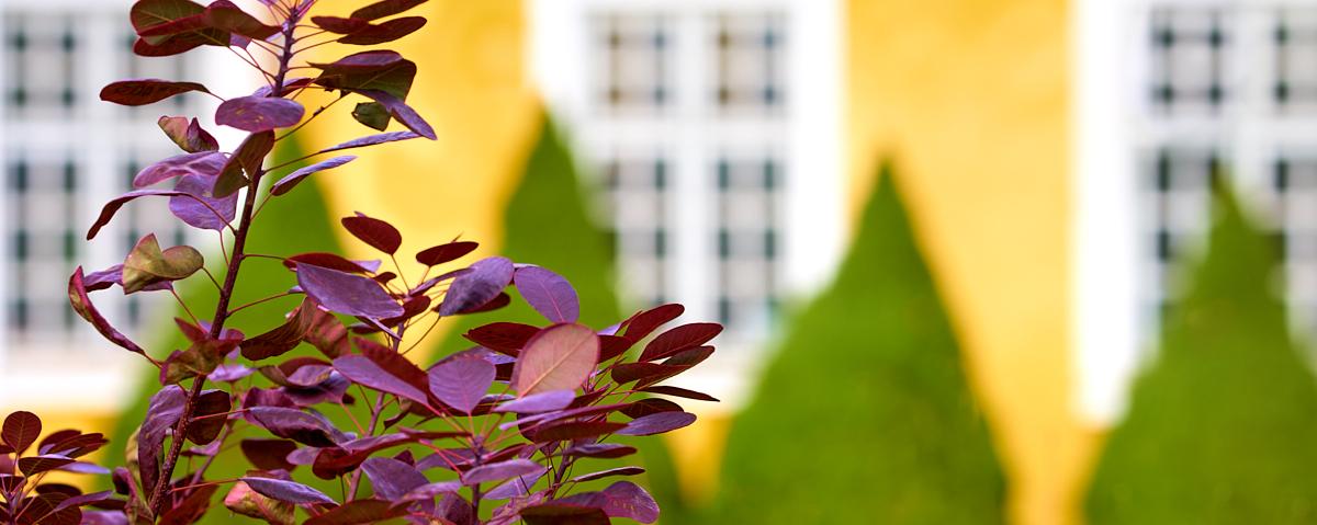Holmegaardshuset_gul-fløj_lang