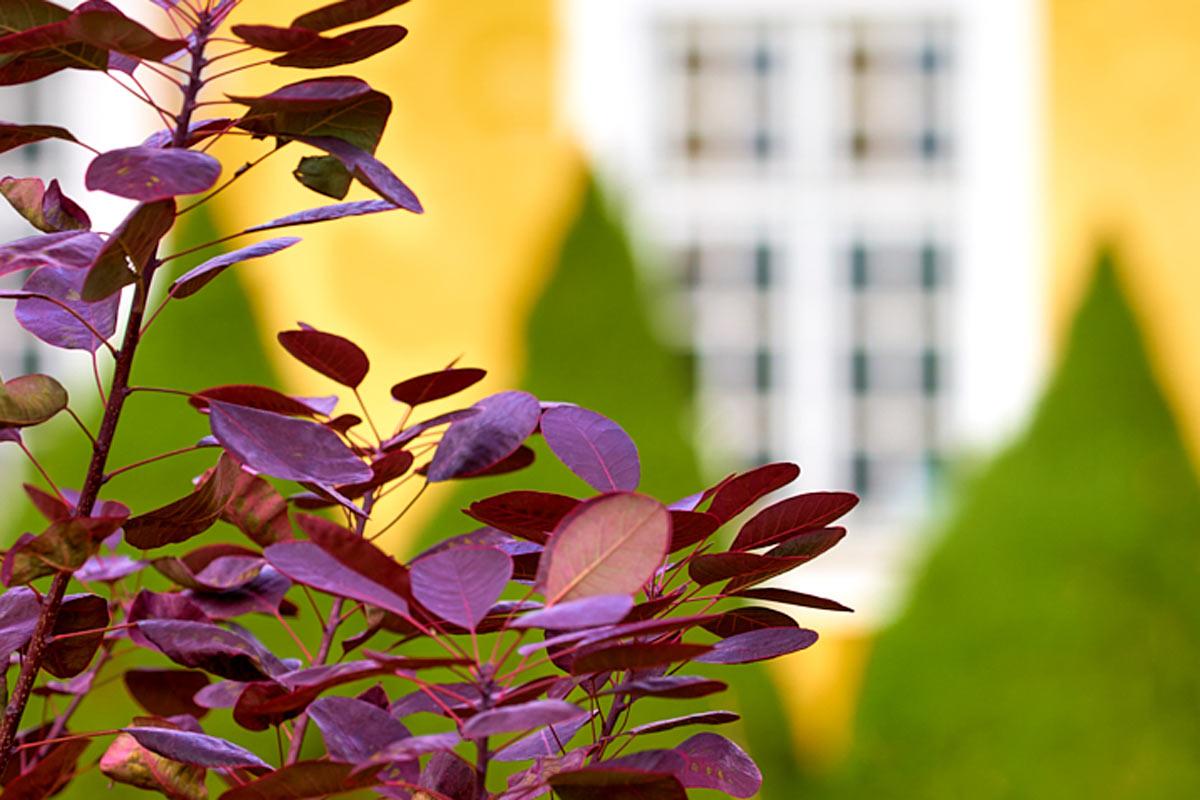 Holmegaardshuset_gul-fløj