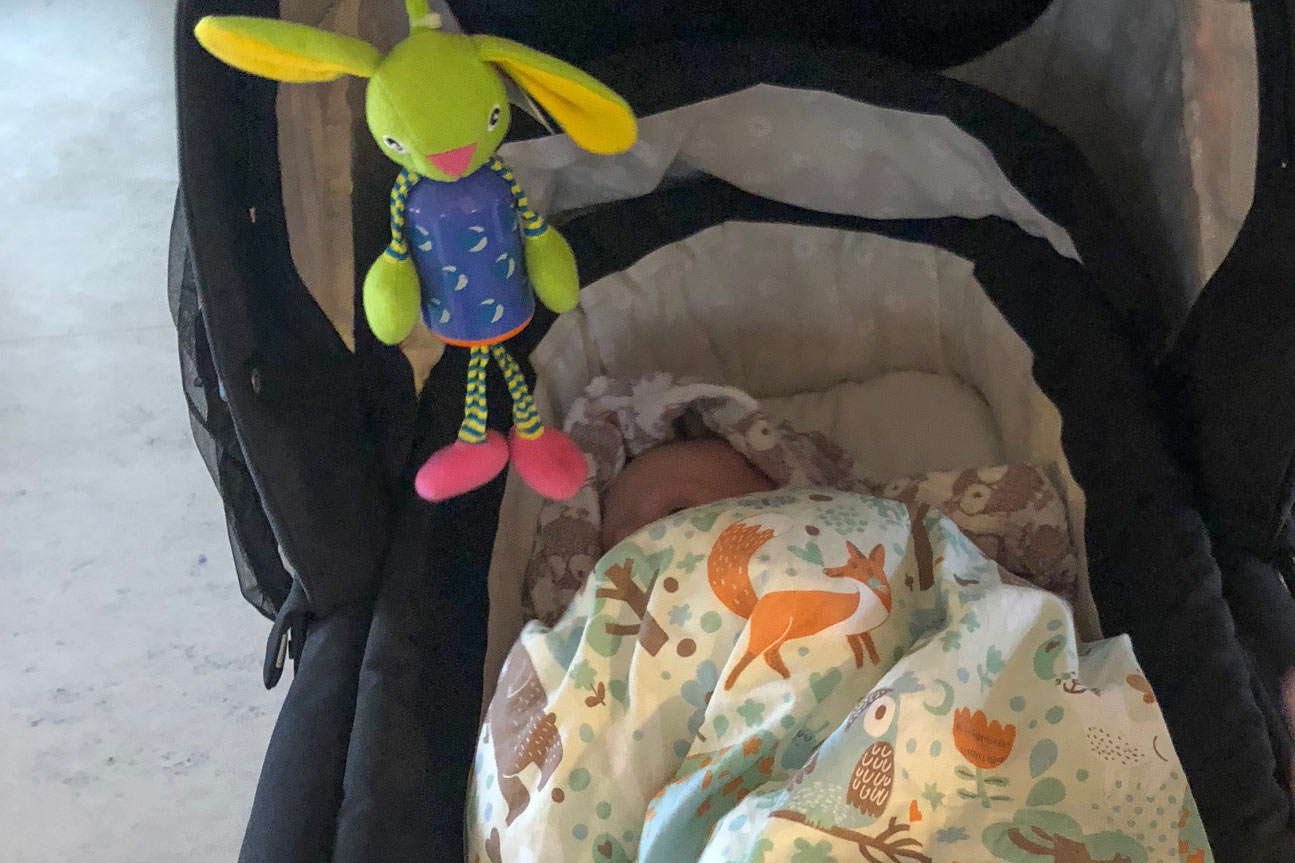 Baby i barnevogn, småbørn, Holmegårdshuset
